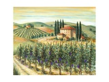 Tuscan Villa and Vineyard