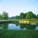 Pond in a Golf Course  Westwood Country Club  Vienna  Fairfax County  Virginia  USA