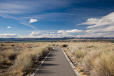 Walkway Leading to a Lake  Mono Lake  Lee Vining  Mono County  California  USA