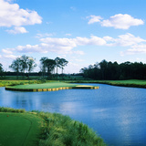 Pond in a Golf Course  Carolina Golf and Country Club  Charlotte  North Carolina  USA