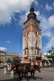 Horse and Trap Passing Wieza Ratuszowa  the 13th Century Town Hall Tower  Rynek Glowny the Main