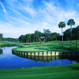 Tpc at Sawgrass  Ponte Vedre Beach  St Johns County  Florida  USA