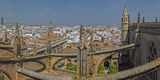 City View from a Cathedral Roof  Seville Cathedral  Seville  Andalusia  Spain