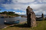 Nishmicatreer Island in Lough Corrib  County Galway/Mayo Border  Ireland