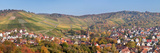Vineyards with Uhlbach  Stuttgart  Baden-Wurttemberg  Germany