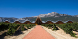 Bodegas Ysios Winery Building and Vineyard  La Rioja  Spain