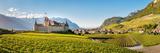 Aigle Castle Surrounded by Vine Fields  Aigle  Vaud  Switzerland
