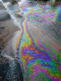 Oil Slick on Water