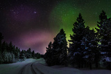 Aurora Borealis or Northern Lights  Lapland  Sweden