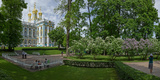 Formal Garden in Front of the Palace  Catherine Palace  Tsarskoye Selo  St Petersburg  Russia