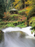 Triberg Waterfall in Autumn  Black Forest  Baden-Wurttemberg  Germany
