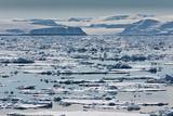 Icebergs  Hinlopen Strait  Spitsbergen Island  Svalbard  Norway