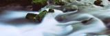 Stream Flowing Through Rocks  Alley Spring  Ozark National Scenic Riverways  Missouri  USA
