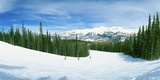 Tourists Skiing on a Snow Covered Landscape  Telluride  San Miguel County  Colorado  USA