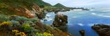 Coastline  Garrapata State Park  Monterey  California  USA