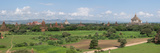 Northern View of Stupas and Temples from Top of Shwe San Taw  Thatbyinnyu Temple  Bagan