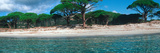 Palombaggia Beach from the Water  Corsica  France