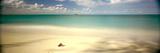 Sand and Surf  Cat Island  Bahamas