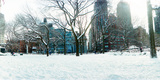 Snow Covered Park  Union Square  Manhattan  New York City  New York State  USA