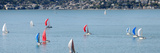 Sailboats on San Francisco Bay with Sausalito in Background  Angel Island  California  USA