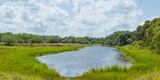 Clouds over the Myakka River  Myakka River State Park  Sarasota County  Florida  USA
