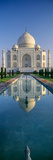 Reflection of a Mausoleum on Water  Taj Mahal  Agra  Uttar Pradesh  India