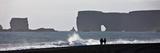 Seashore at Reynisfjara  Dyrholaey  Iceland