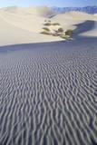 Desert Sand  Death Valley  California