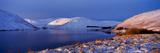 Winter Sunlight over Megget Reservoir  Scottish Borders  Scotland