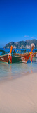 Fishing Boats in the Sea  Phi Phi Islands  Phuket Province  Thailand