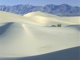 Sand Dunes at Death Valley National Park  California