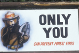 """A Sign That Reads """"Only You Can Prevent Forest Fires"""""""
