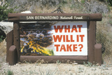 """A Sign That Reads """"What Will it Take"""""""