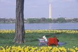 Couple Reading in Lady Bird Park  the Potomac River  Washington  DC