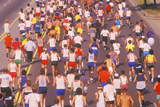 View from Behind of Group of Runners in Los Angeles Marathon  Los Angeles  CA