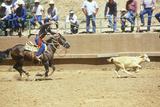 Calf Roping  Navajo Rodeo  AZ