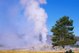 This Is the Famous Old Faithful Geyser the Geyser Is Erupting at Sunrise