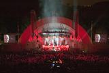 Sting Performing at the Newly Renovated Hollywood Bowl  Hollywood  California