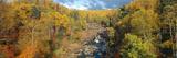 Autumn Color Along Beaver River and Beaver Bay  Minnesota