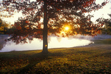 Autumn Pond at Sunset  CT