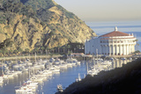 Casino Building and Avalon Harbor  Avalon  Catalina Island  California