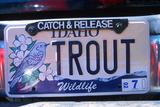 Vanity License Plate - Idaho