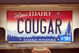 Vanity License Plate - Idaho