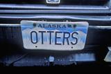 Vanity License Plate - Alaska