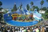 Shamu Stadium  Sea World  San Diego  CA