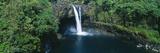 Rainbow Falls in Wailuku River State Park  Hilo  Hawaii