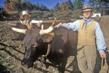 Men with Oxen  Old Sturbridge Village  Sturbridge  Massachusetts