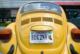 Vanity License Plate - Virginia