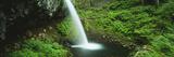 Pony Tail Falls  Columbia River  Portland  Oregon