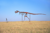 Metal Sculpture Dinosaur Roadside Attraction  Pigeon Fork  Tn